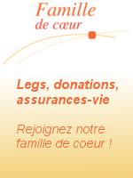 legs,donations